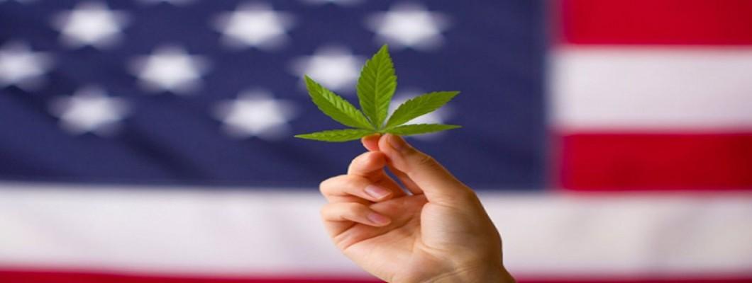 Draft US Cannabis Reform Bill Released