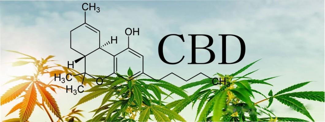 Taking CBD to Improve your Health