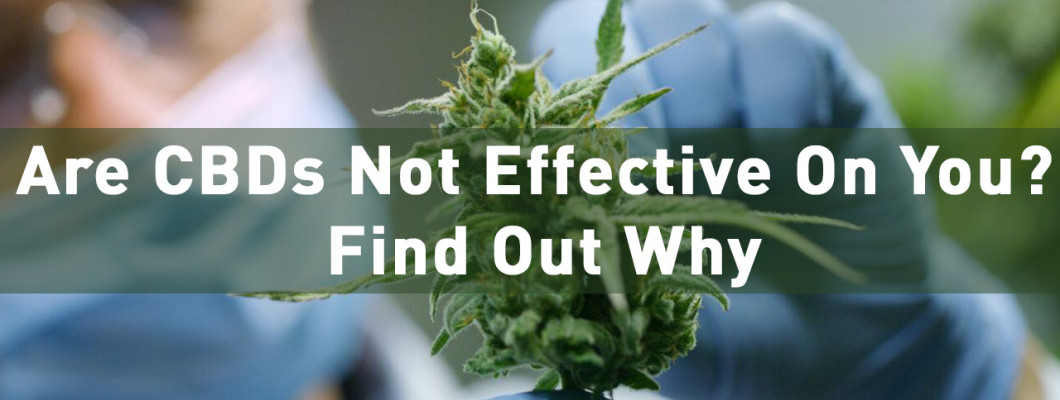 Are CBDs Not Effective On You? Find Out Why