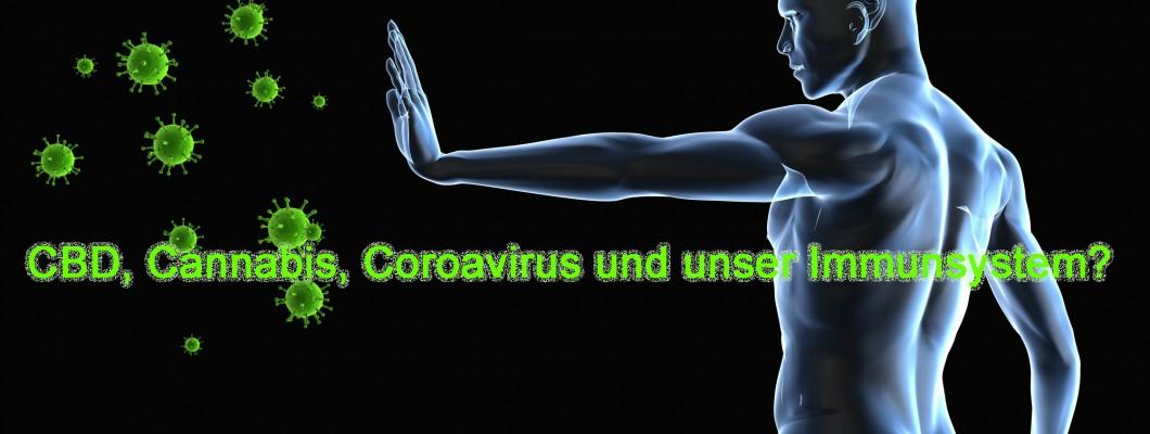 CBD, Cannabis, Coroavirus und unser Immunsystem?