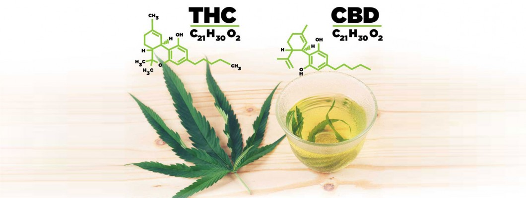 Consumers do not know the THC and CBD content in cannabis products