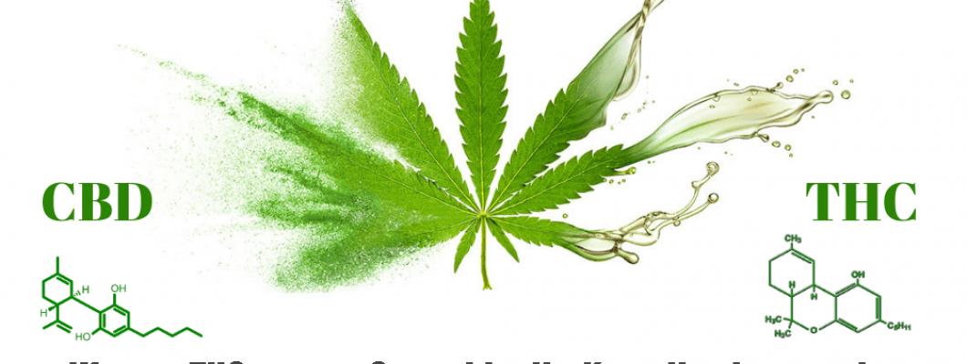 Warum THC-armes Cannabis die Kanadier interessiert