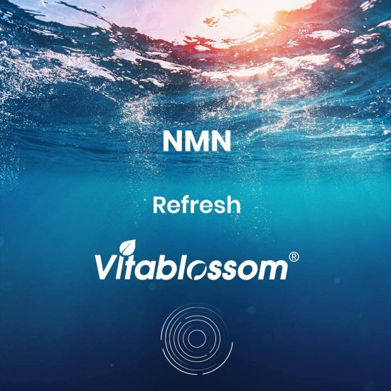 Vitablossom Refresh NMN Capsules with Maximum Strength 500mg 60 Capsules